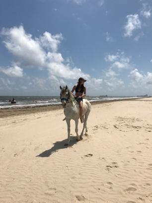 Horse Weekend 2017 (10)