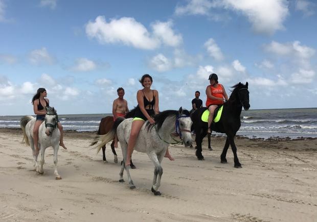 Horse Weekend 2017 (1)